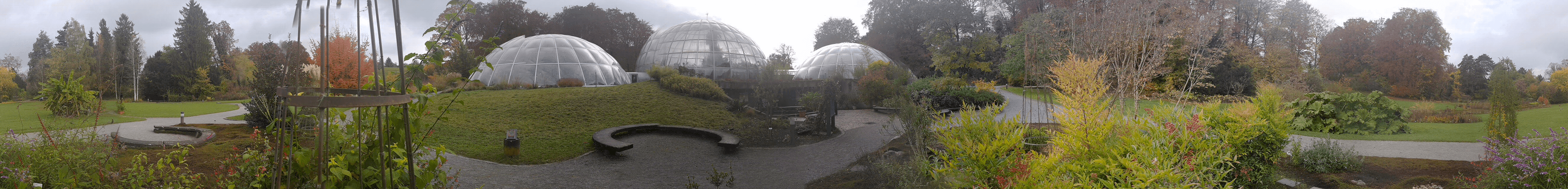 Jardín Botánico de Zurich