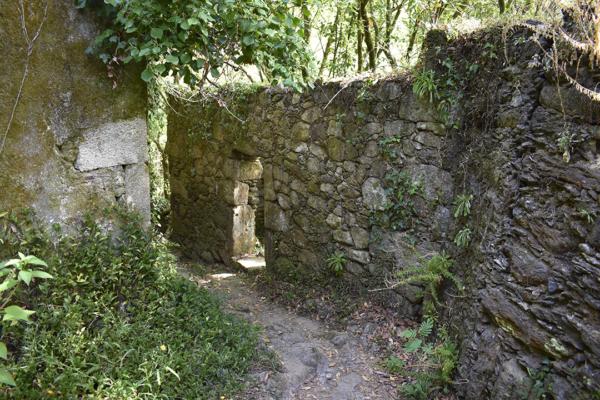 antiguos molinos