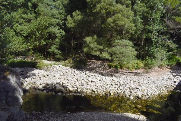 rio pedras