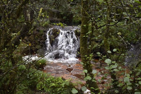 ferventa ruta 3 ríos